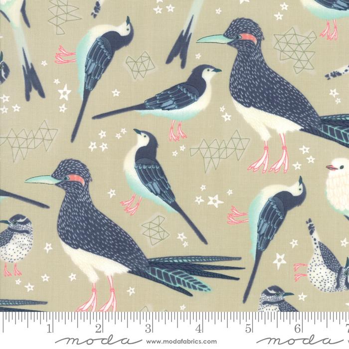 Desert Song Birds Roadrunners on Tan