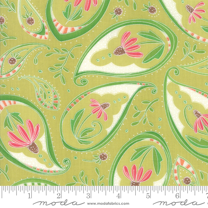 Painted Meadow Coneflower Paisley Light Green