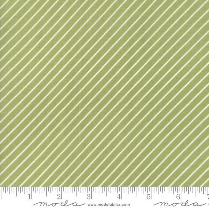 Early Bird Stripe Green  55196 16