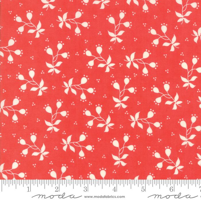 Scarlet Sage Scarlet