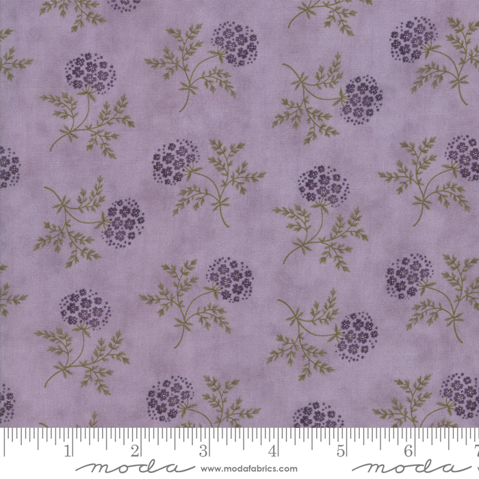 Clover Meadow Lilac