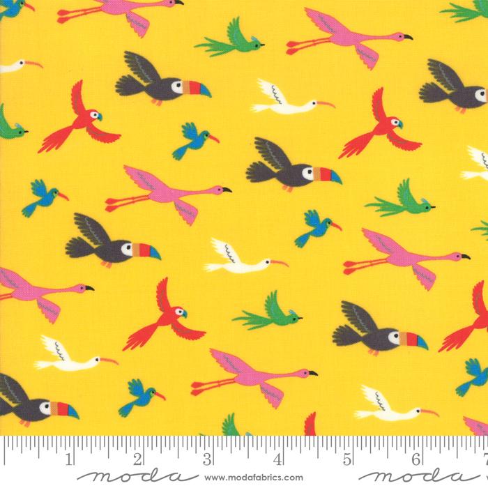 Bicycle Bunch Banana Flying Tropical Birds