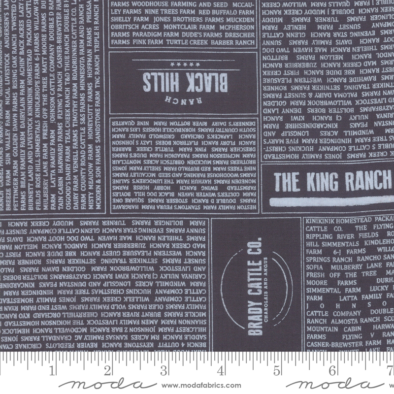 Branded 5780-12 Black by Sweetwater for Moda Fabrics