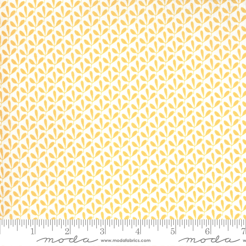 Spring Chicken Yellow 55528 24