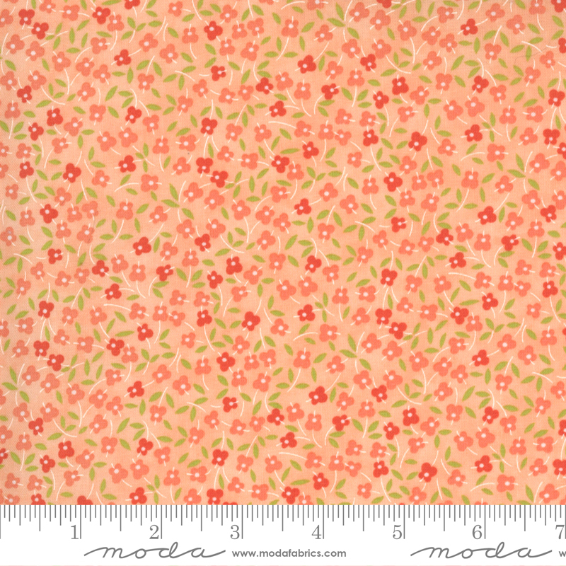 MF Strawberries Rhubarb Apricot 20406 13