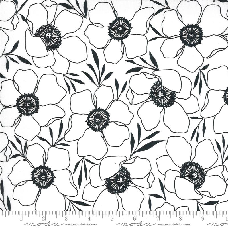11502 11 Illustrations Paper