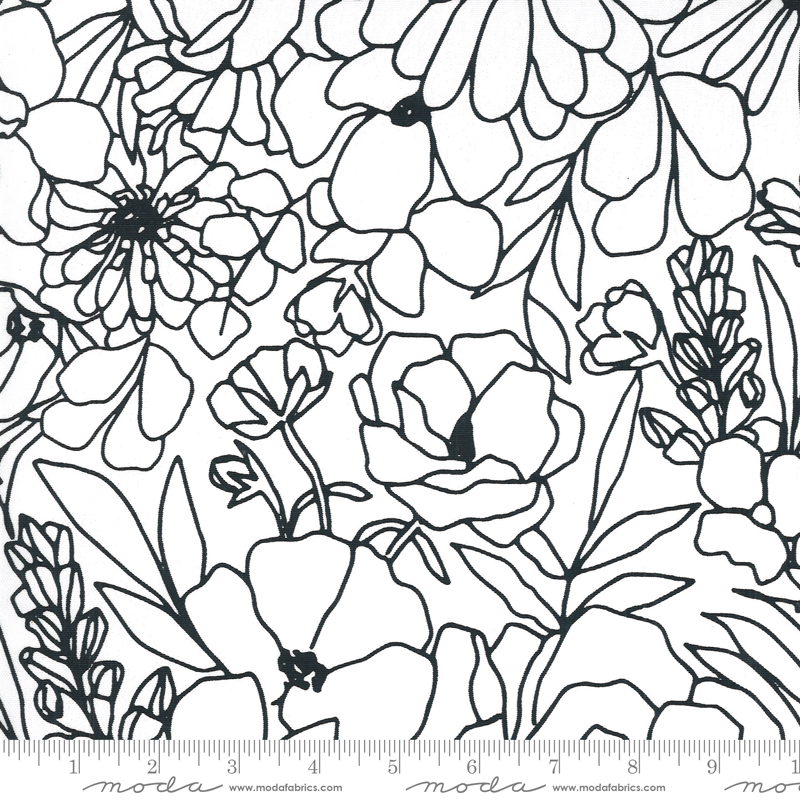 11507 15CV Illustrations Canvas Paper