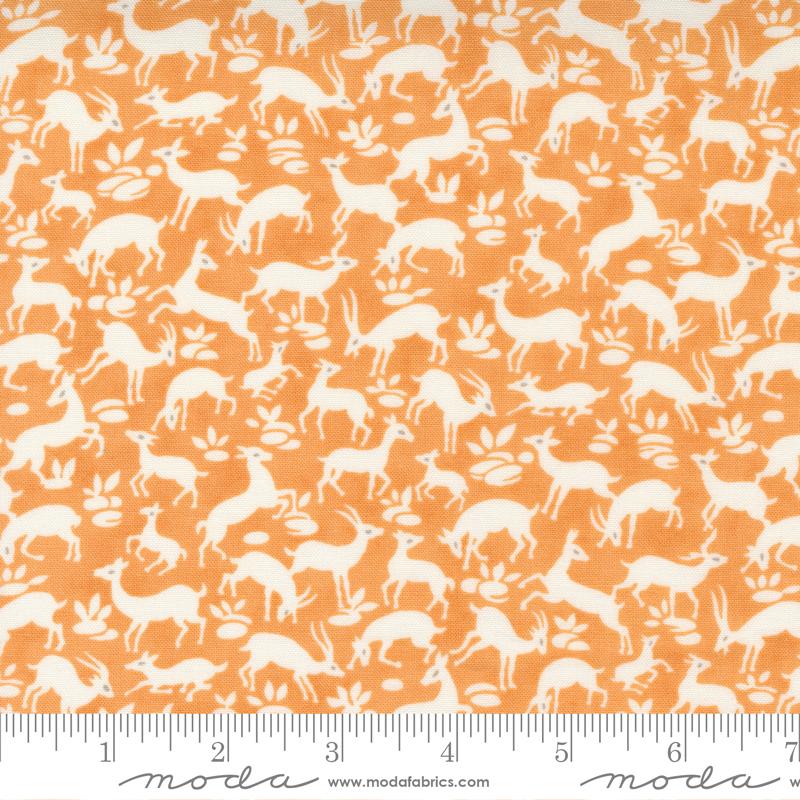 Pumpkins Blossoms - Deer Forest Pumpkin