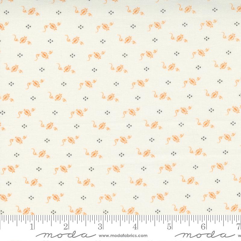 Pumpkins and Blossoms - Cinderella Pumpkins Vanilla Pumpkin