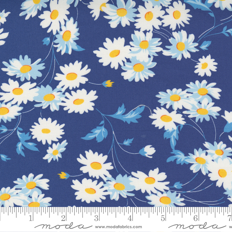 PRE-ORDER Story Time 21791-18 Real Daisy Navy