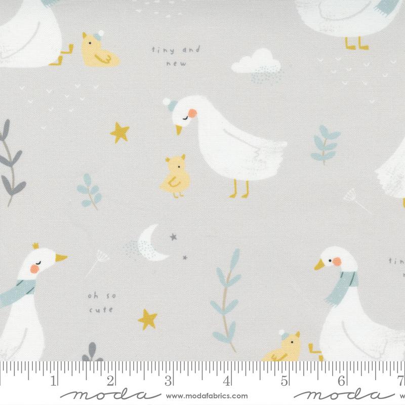 Little Ducklings Warm Grey