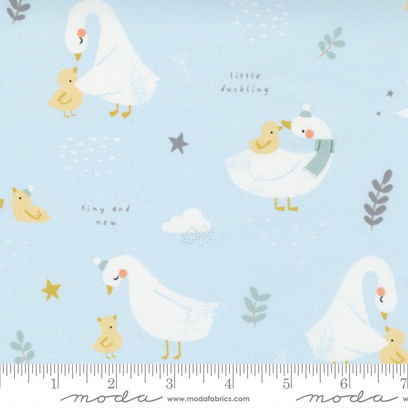 Little Ducklings Blue