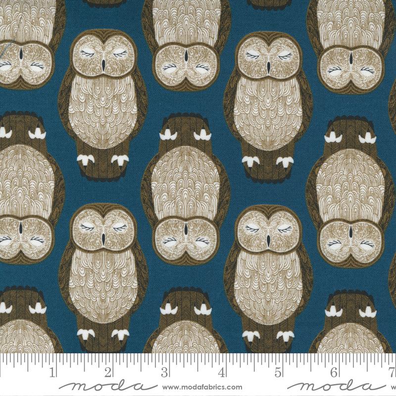 Nocturnal - Sleeping Owls Lake