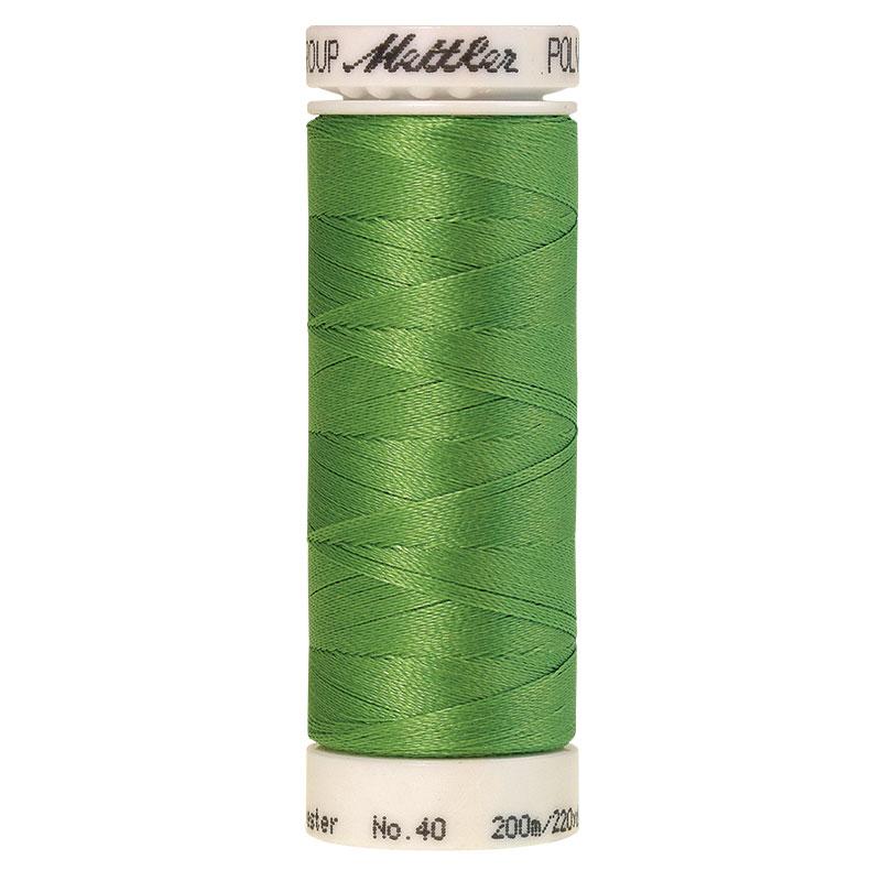 Polysheen Embroidery Thread #5610