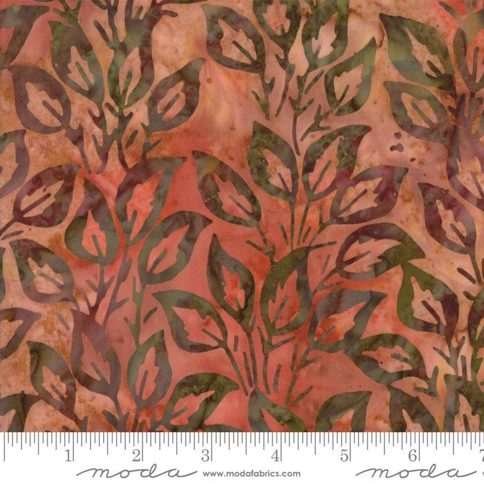 Bear Creek orange leaves