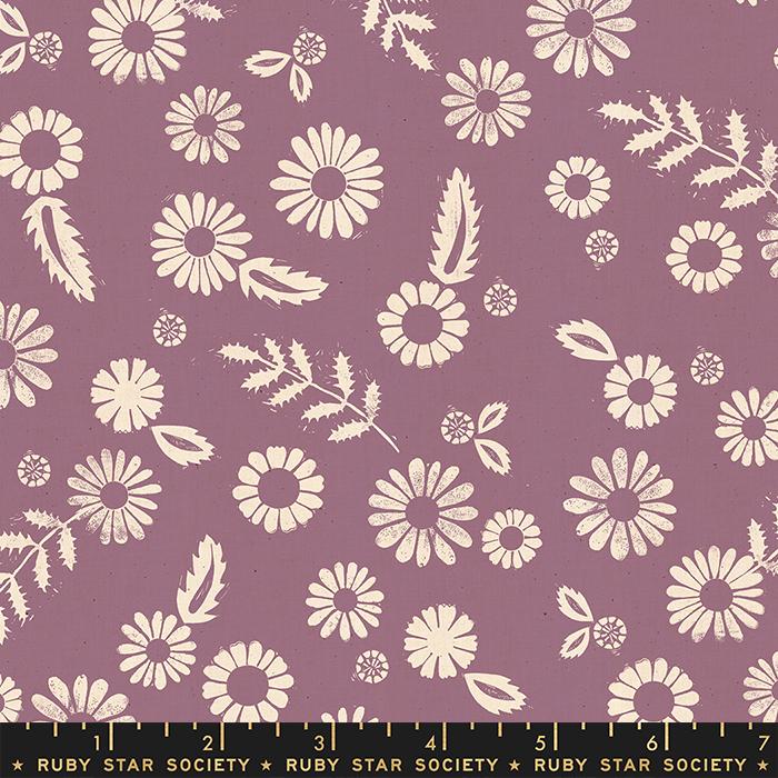 Golden Hour Daisy Lilac