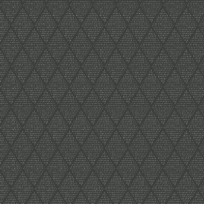 Bear Hug - Texture - Carbon