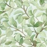 Elizabeth's Studio-Beautiful Birds  4311-Cream