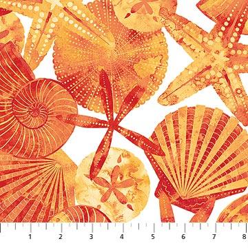Ocean Tides 21513 56