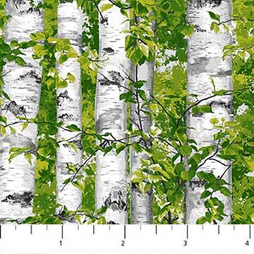 Naturescapes - Abundant Garden Birch Trees Green