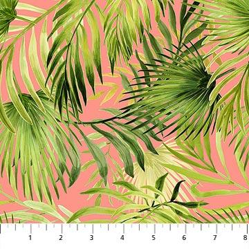 Northcott Island Sun Tropical Leaf