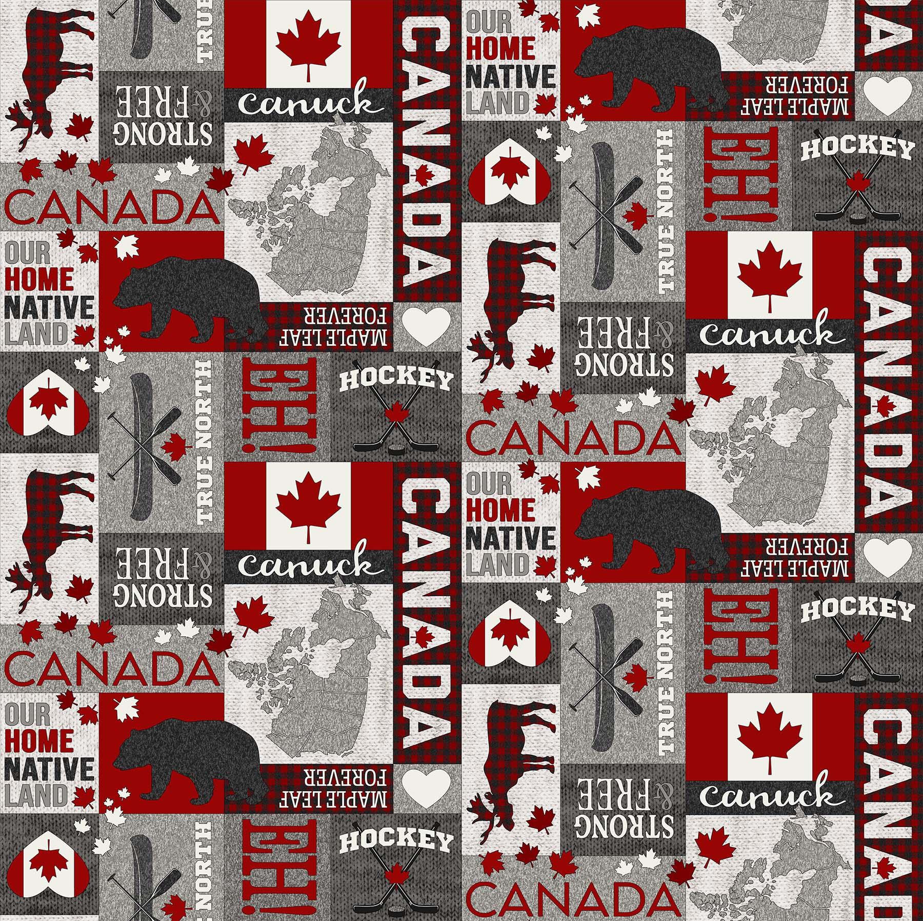 MY CANADA GRAY MULTI 24009-92