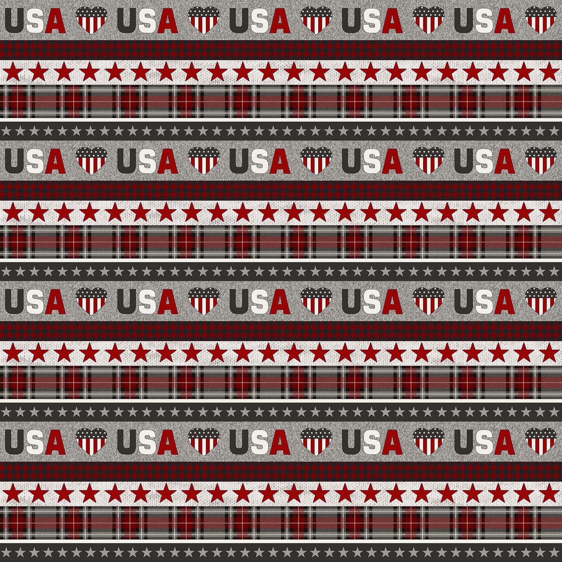 24020-92 My America / Gray Multi - Lengthwise Stripe