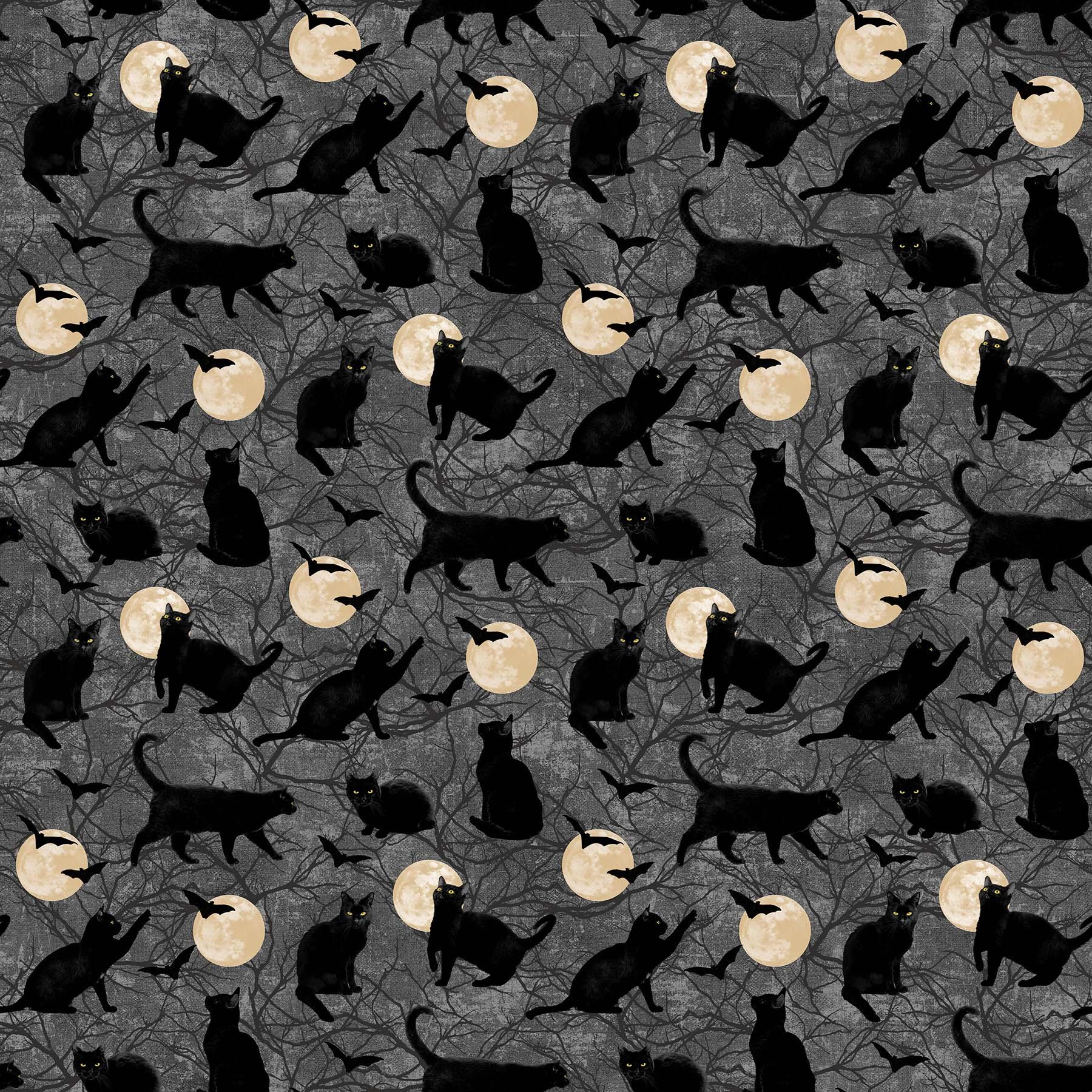 BLACK CAT CAPERS CATS CHASING MOON DARK GRAY