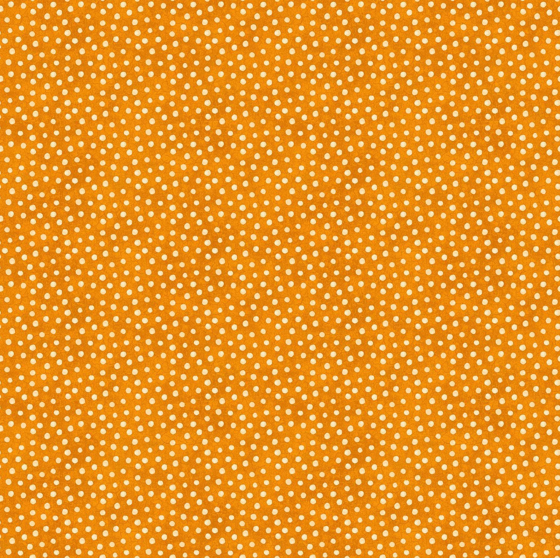 Black Cat Capers Beige Dots on Orange 24125 55