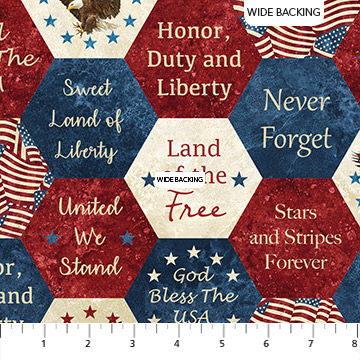 Americana Saying Hexies - Stonehenge Stars and Stripes VI Wide Backing