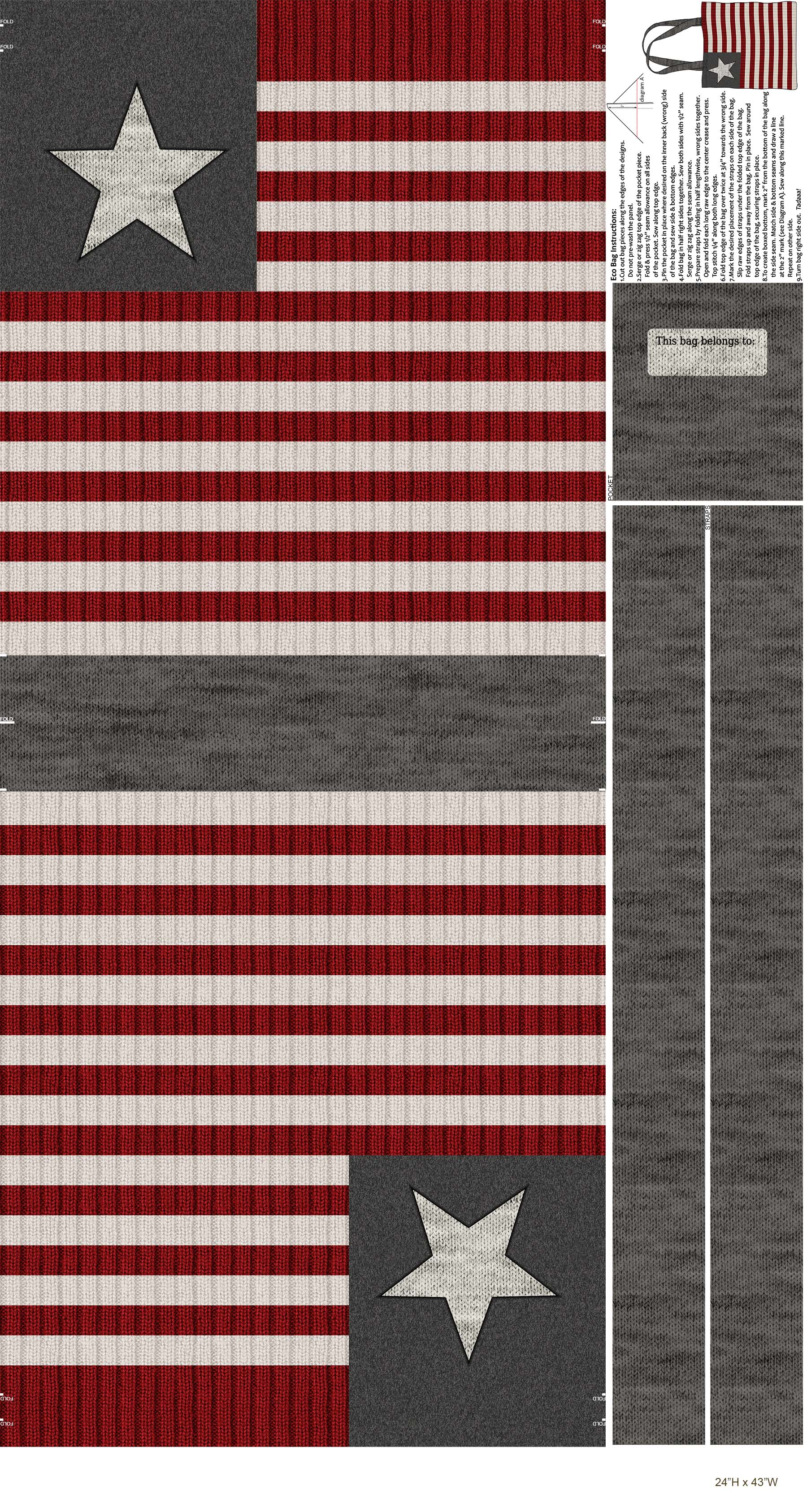Canvas Panel - My America 43 X 24 w/ Bag Instructions