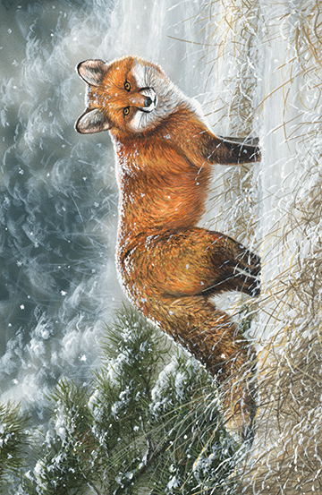 Naturescapes The Sly Fox - Single Colorway DP22445-10