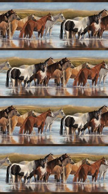 Naturescapes Unbridled - Horses