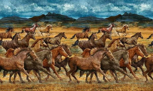 WILD HORSES PANEL 23031