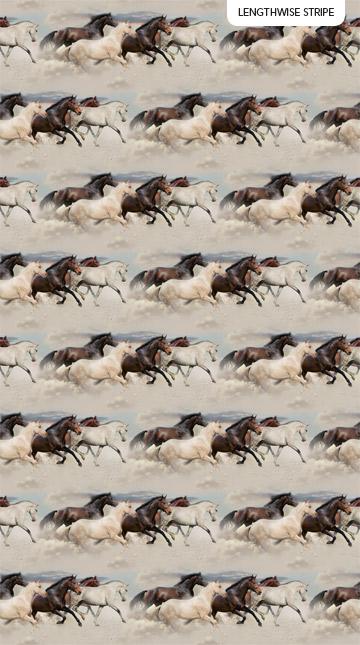 Maverick DP23615-12 Mustang Border