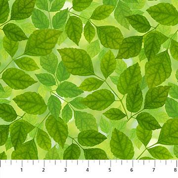 Budding Romance Green Leaves
