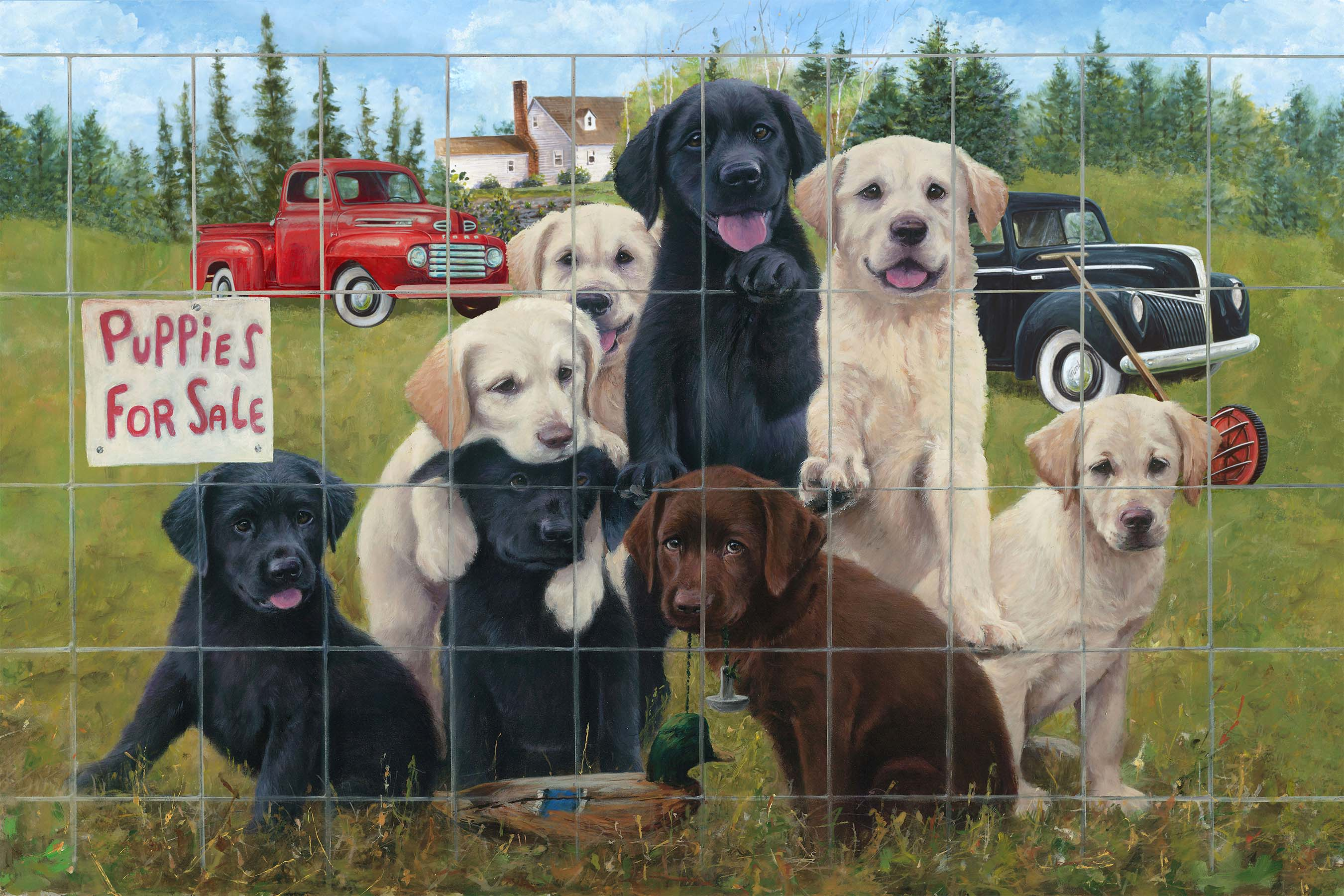 PUPPIES FOR SALE Panel 29 x 44