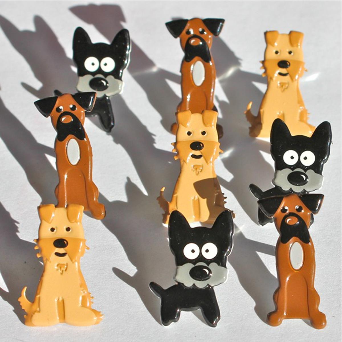 Brads - Puppy