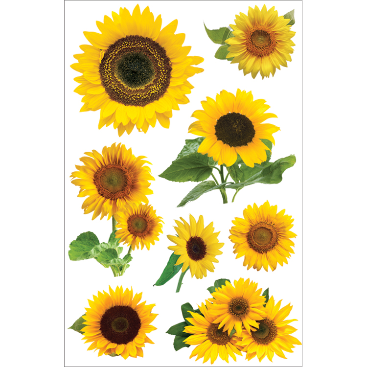 Paper House 3D Stickers 4.5X7.5 -Sunflowers