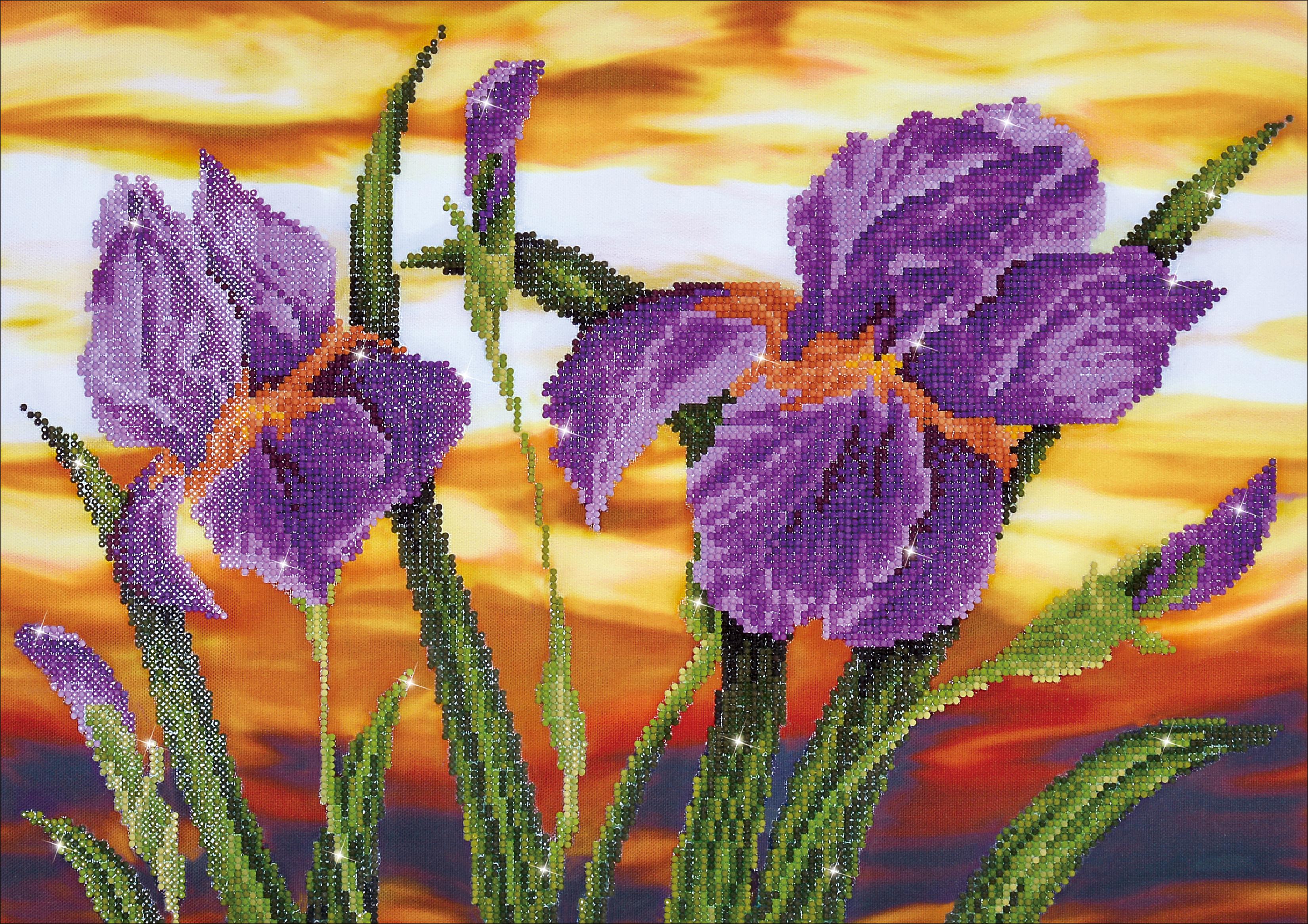 Diamond Dotz Diamond Embroidery Facet Art Kit 23.5X17.75-Iris Sunset