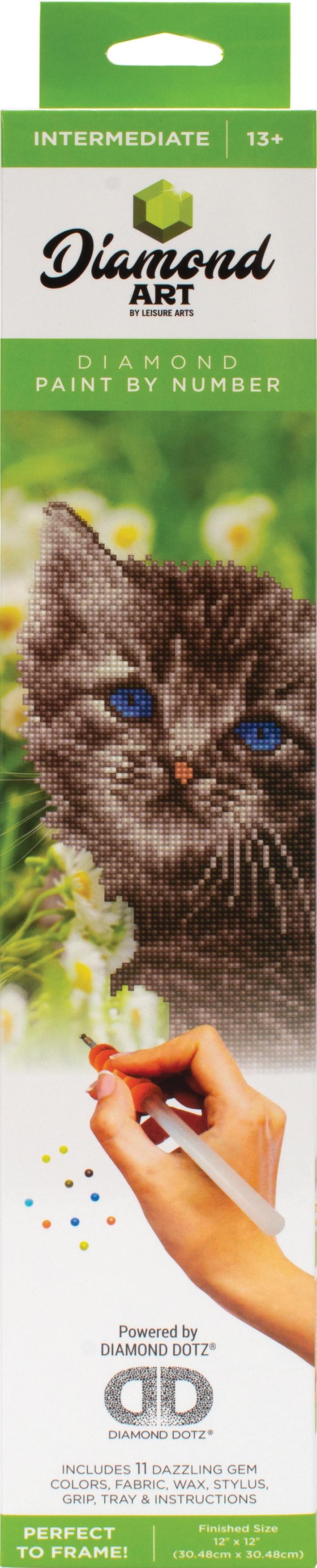 Diamond Art Kit 12x12 Intermediate Kitten