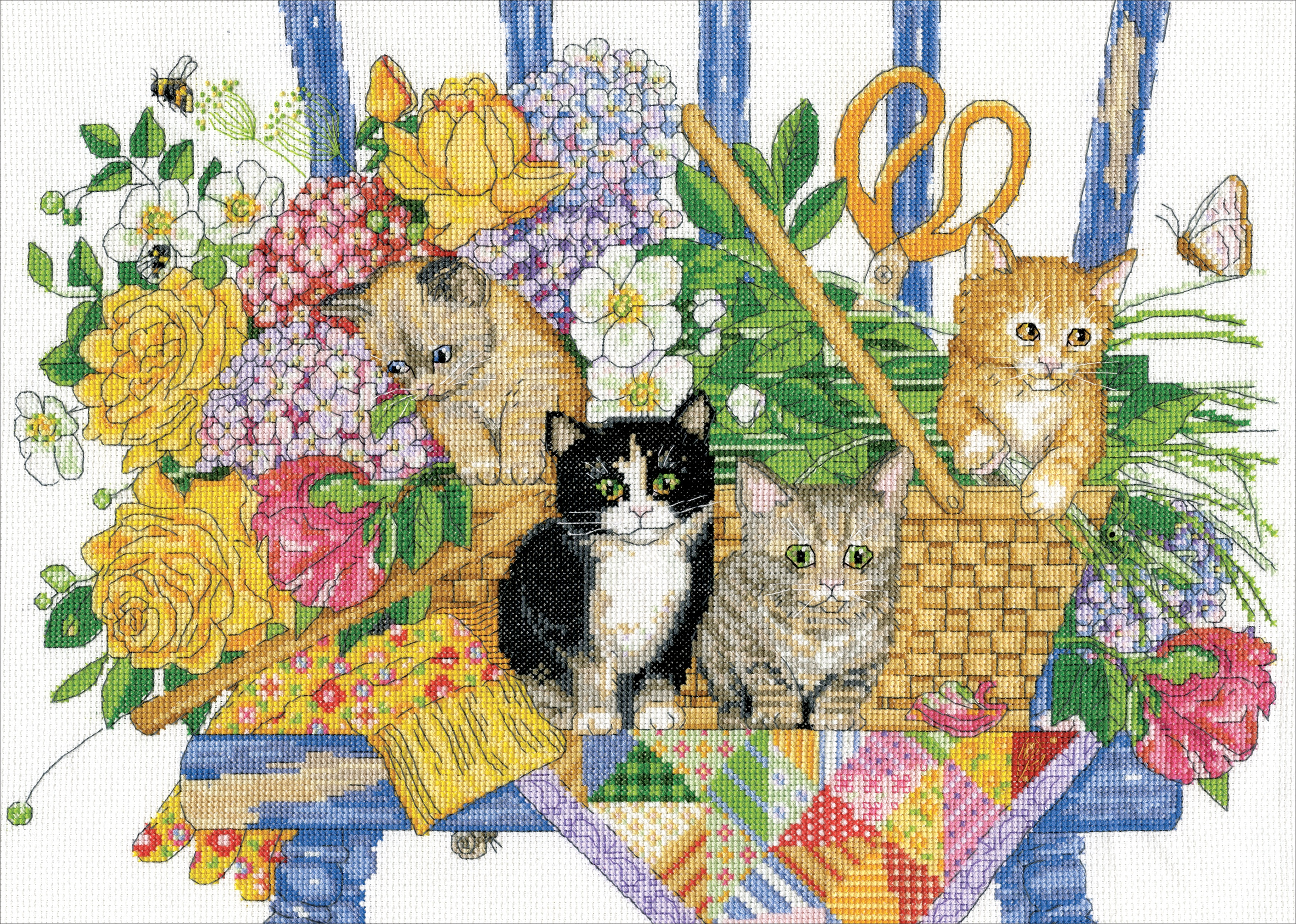 Kittens CCX