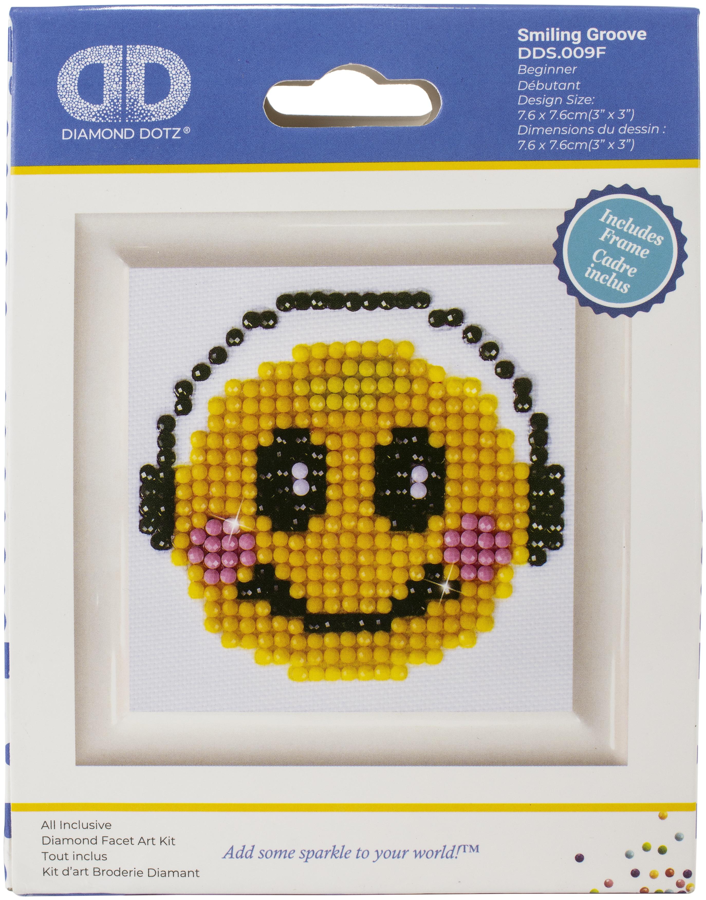 Diamond Dotz Diamond Embroidery Facet Art Kit W/ Frame-Smiling Groove W/ White Frame