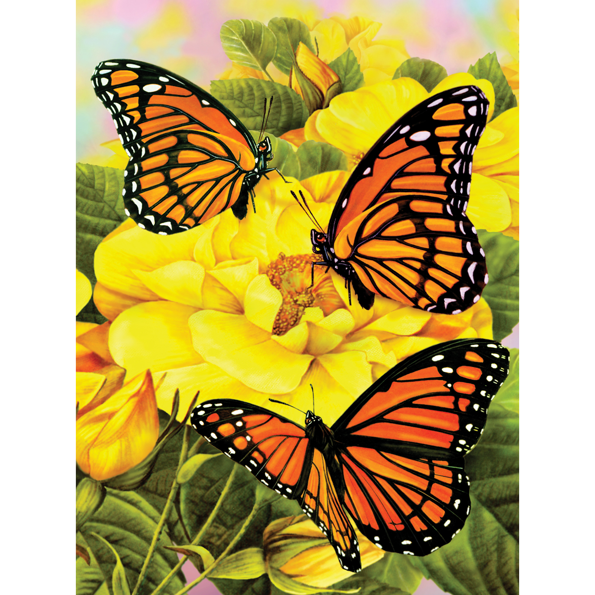butterfly paint kit