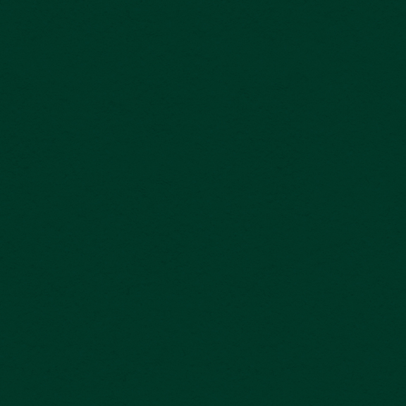 My Colors Classic 80lb Cardstock 12X12- Forest Green