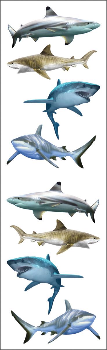 SHARK WRLD-MRS GROSSMAN'S STKRS