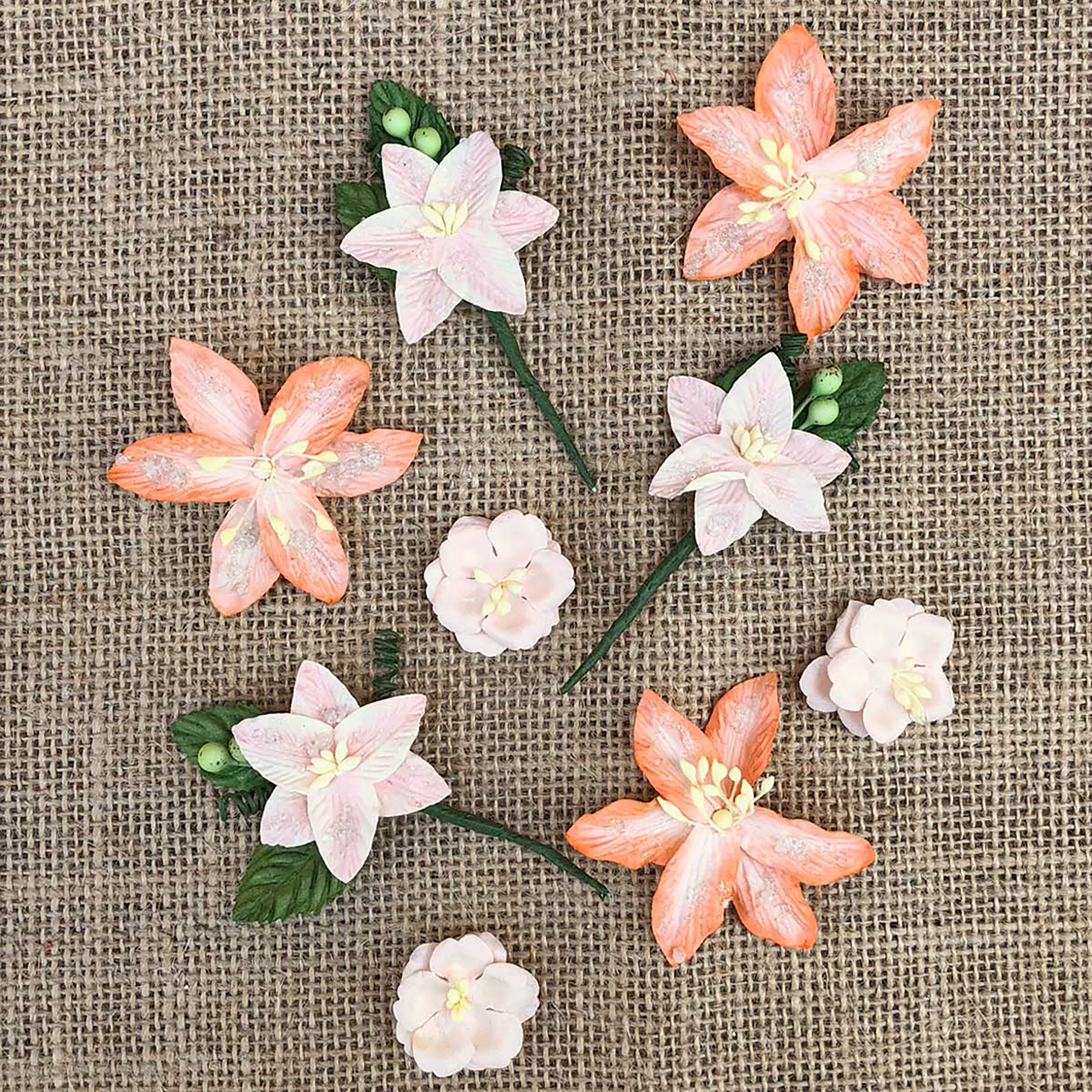 49 And Market Stargazers Paper Flowers 9/Pkg-Peach Sorbet