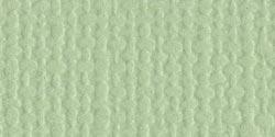 Bazzill - Aloe Vera/Canvas -Mono