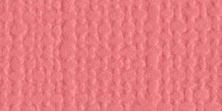 Flamingo -Mono Cardstock 12X12