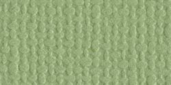 Pear -Mono Cardstock 12X12